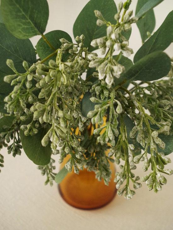 Eucalyptus,ポポラス,BOBCRAFT