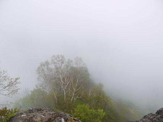 hiking mt togajushi
