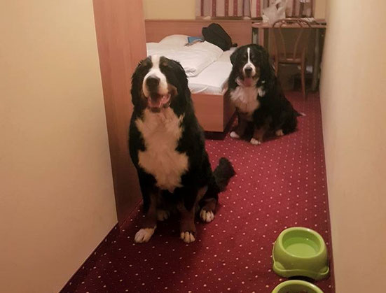 Müde aber glücklich im Hotelzimmer angekommen.