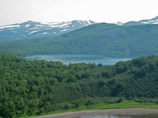 Kamtschatka Waldtundra Wikipedia c) Rdfr