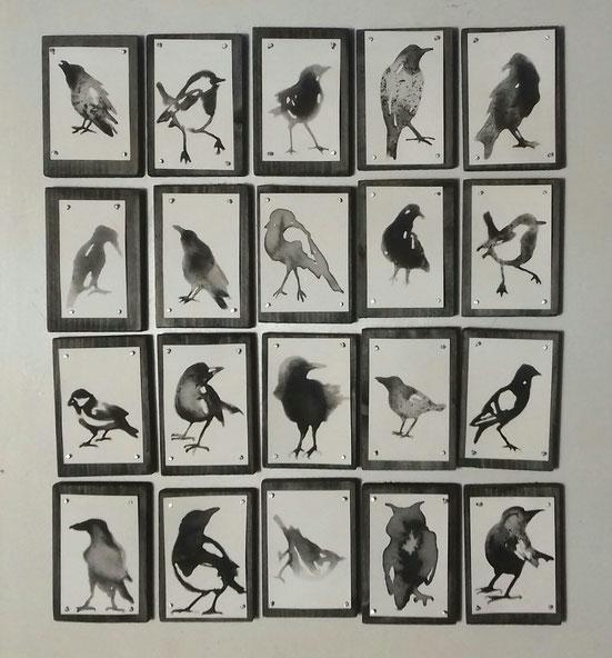 Vogels Birds (PakjeKunst) 2019