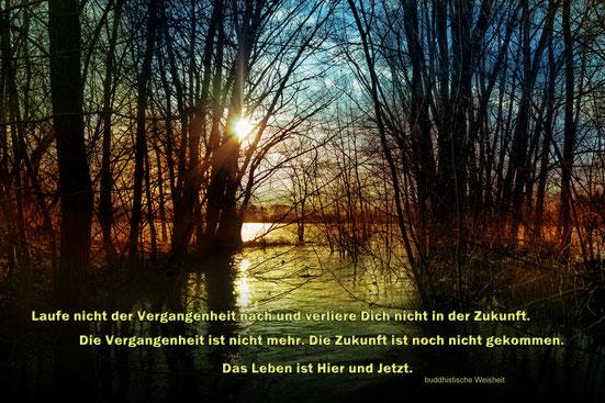 landschaft-sonnenuntergang-am-see-spruchkarte-weisheit-leben-im-hier-und-jetzt