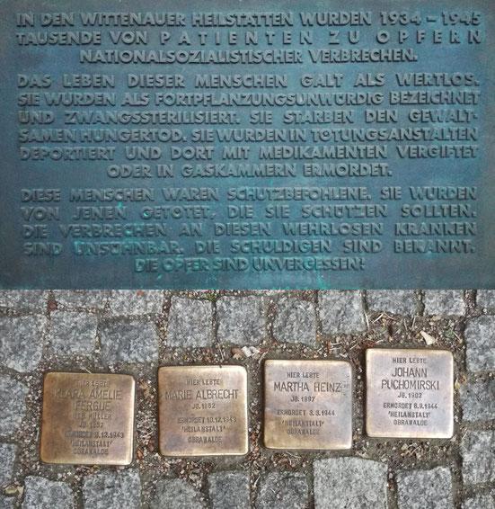 Auch am Haupteingang der Klinik findet man Stolpersteine und eine Gedenkplatte. Klara Amelie Fergue, Marie Albrecht, Martha Heinz und Johann Puchomirski sind vier von über 2.000 Patienten, die in Meseritz-Obrawalde ermordet wurden. (Fotos: J. Frick)