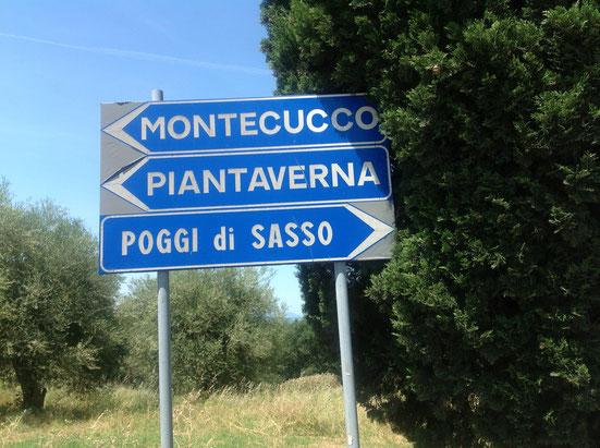 Zona del Montecucco DOC. Vino che si produce vicino a Cinigiano in Maremma. Itinerario stradale. Foto blog Etesiaca