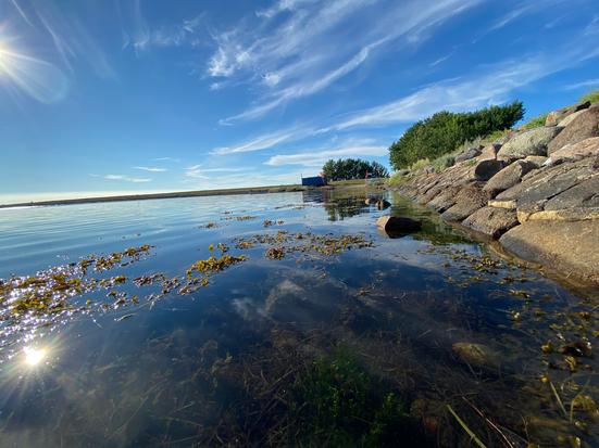 Natur - Himmel, Wolken, Rapsfeld in Münster Gievenbeck