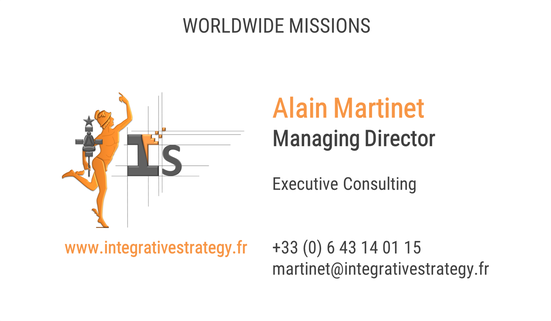 integrative strategy strategie gouvernance 3P alain martinet consulting service