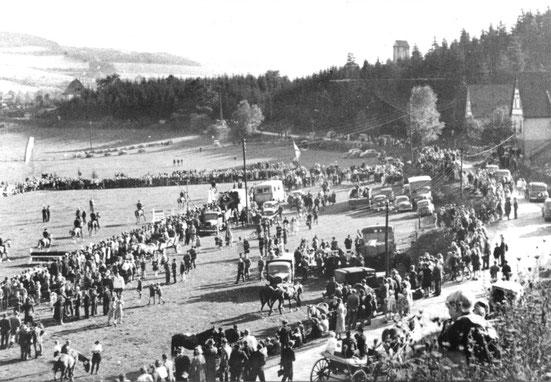 Das Reitgelände im Mühlental während der Turnierveranstaltung am 2. und 3. Oktober 1948 (Pressefoto)