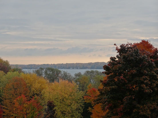 Fall colors am Lake Simcoe in Ontario.