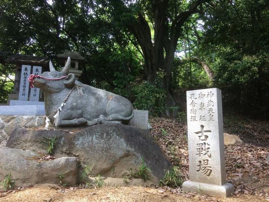 善根寺春日神社(筆者撮影)