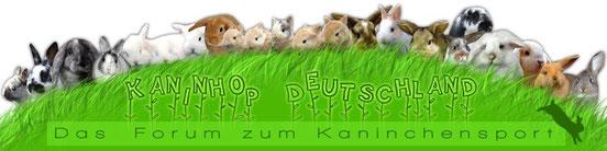 Kaninhop Deutschland Forum
