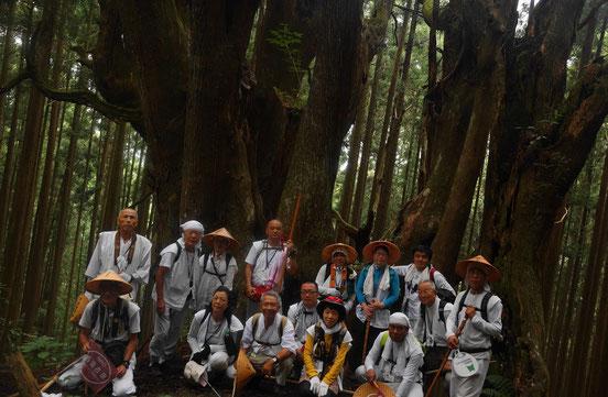 吉村家跡の防風林