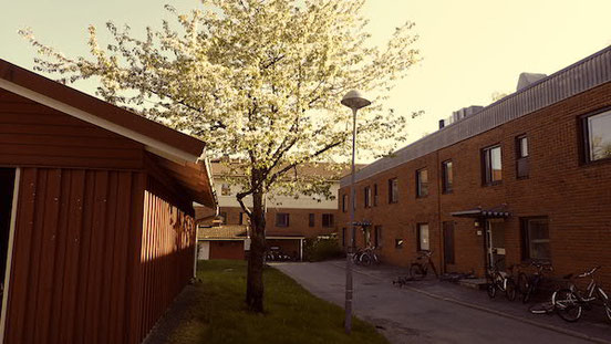 Im Studentenviertel Ålidhem in Umeå