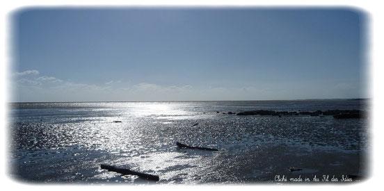 Coucher de soleil à la Pointe de l'Aiguillon - Eté 2012