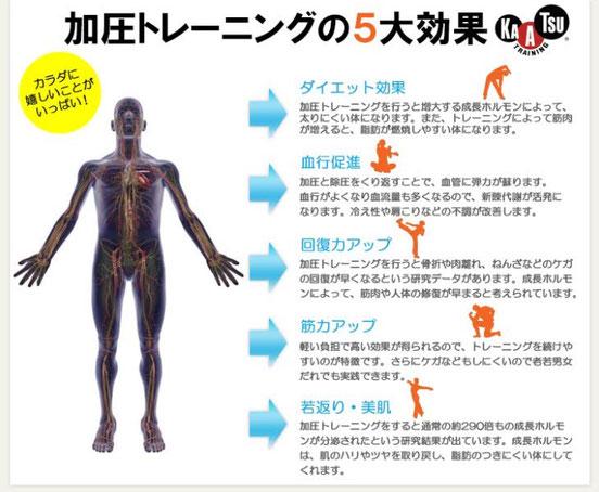 【加圧トレーニング五大効果】