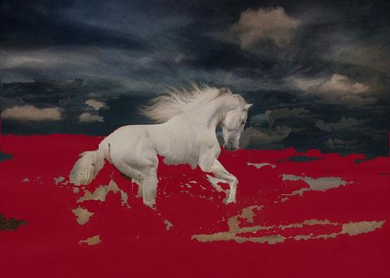 Le raisin fut écrasé dans la cuve à l'extérieur de la ville. Du sang en sortit et monta jusqu'aux mors des chevaux, sur une étendue de 300 km. Les chevaux évoquent la guerre. Le nombre de tués sera très important, ils boiront du vin de la colère de Dieu.