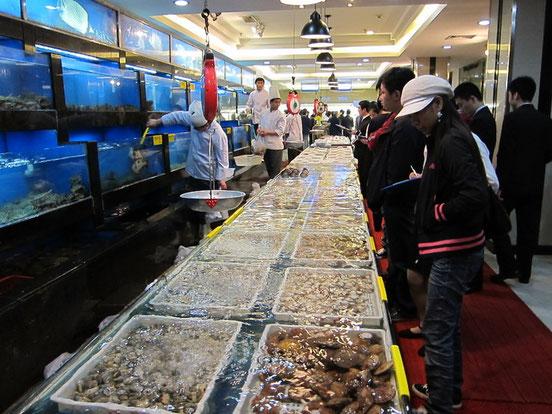 ココの店はそこそこ大型なので種類も豊富!(2010年5月撮影)