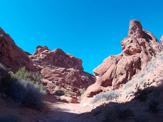 Bild: HDW-USA, Las Vegas, Los Angeles, Highway, Route 66, Amerka, Mister T. und der Weiße Büffel, Amerika, Red Rock Canyon