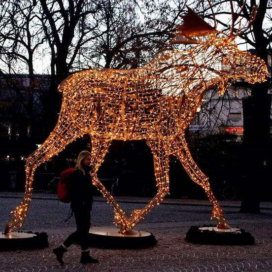 Das eine ist eine leuchtende Elchfigur in Stockholm.