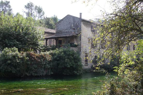 Bild:Sorgue in Fontaine de Vaucluse