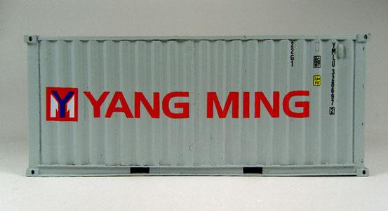 Ein 20' Dry Container  der Yang Ming  Reederei.