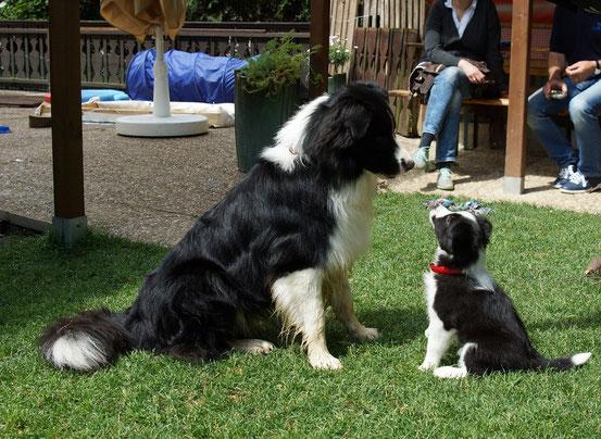 Byron und Cara