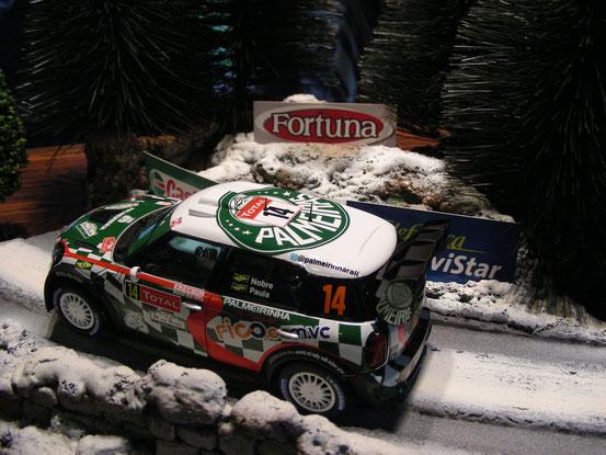 Mini Works WRC