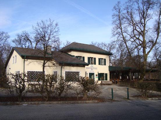 Die Wiener Waldschule (Südfront)