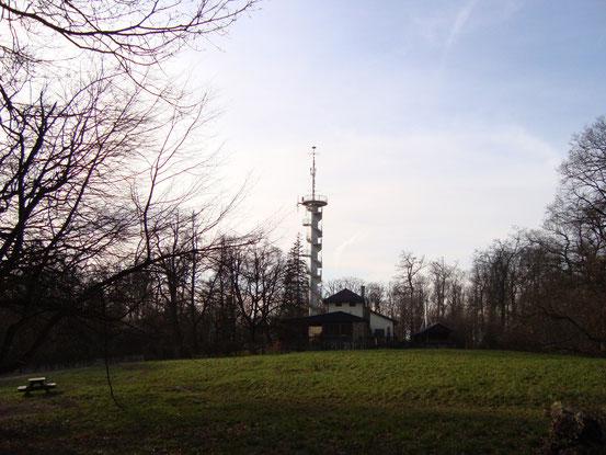 Die Jubiläumswarte (Anblick von Osten), vorne die Vogeltennwiese mit der Wiener Waldschule