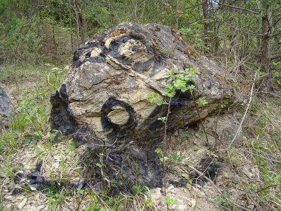 Ein Gesicht sagt 'Auf Wiedersehen' am Steinbruchsee
