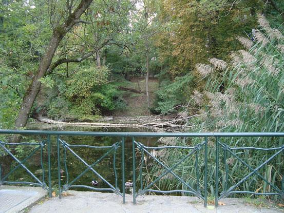 Oberer Teich im Pötzleinsdorfer Schlosspark