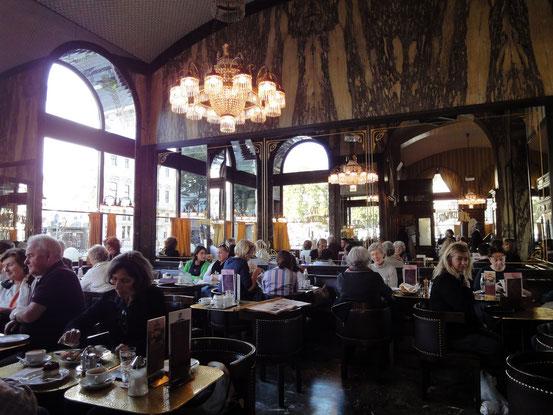 Café Schwarzenberg (Foto: MAP2Café). Link zur Website: Klick aufs Bild