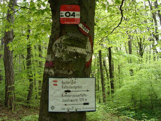 Wegweiser an der Einmündung des Steilwanderweges in die Schutzhausstrasse. Das Schlendern hinunter nach Perchtoldsdorf eine wahre Labsal.
