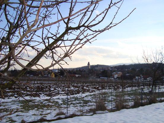 Blick von der Höllriegelstrasse auf den Burgturm von Perchtoldsdorf