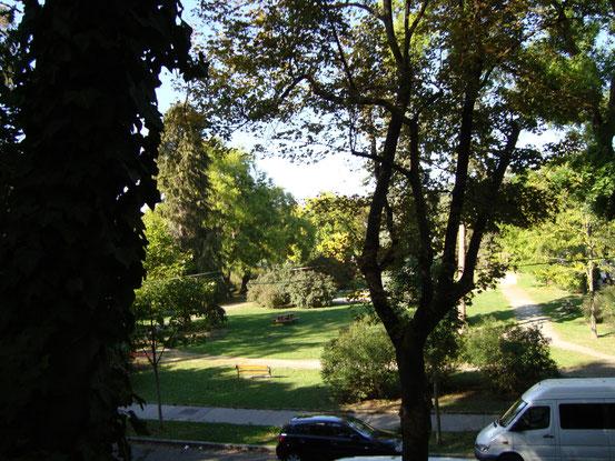Blick von der Anhöhe an der Nordseite des Sternwarteparks auf den Joseph-Kainz-Park. Dahinter befindet sich der Türkenschanzpark.