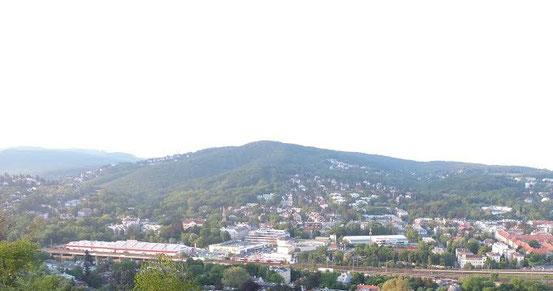Blick vom Himmelhof auf den Satzberg