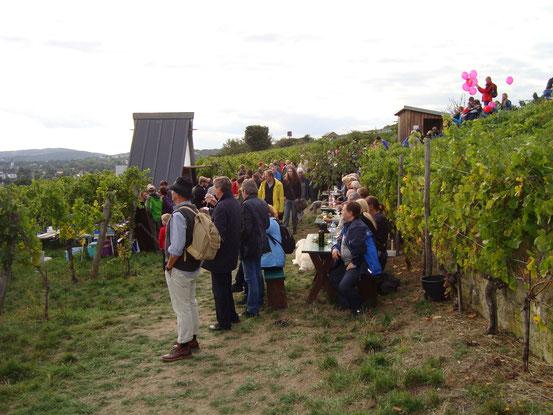 Am Eichelhofweg eine Abzweigung zur für uns letzten Labestation mit traumhafter Aussicht in der Abendsonne, und weiter in der Direttissima zwischen den Weinstöcken wild hinunter zur Linie D in Nussdorf