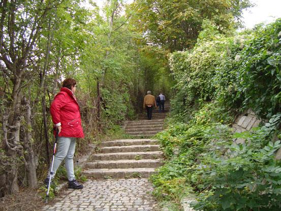Weiter ging's nach Grinzing hinunter, durch den Ort in die Wildgrube und über mehr als 100 Stufen (Abschneider) hinauf auf die Schneid des Nussberges