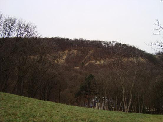 Der Römersteinbruch von Sievering westlich des Gspöttgrabens