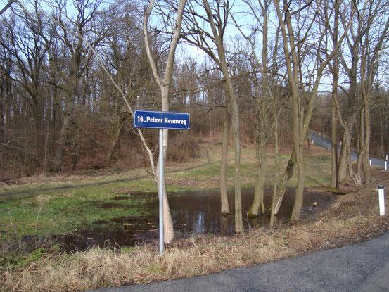 Am Waldweg hinauf zur Jubiläumswarte. Um diese Jahreszeit sind die Waldwege gatschig.