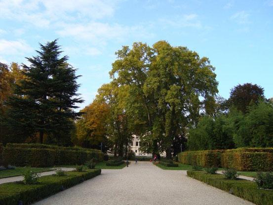 Liechtensteinpark, Blick zum Sommerpalais an der Alserbachstrasse