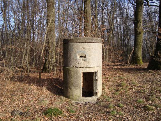 Relikt aus der Kriegszeit auf der Vogeltennwiese. Davon gibt es in der Umgebung einige.