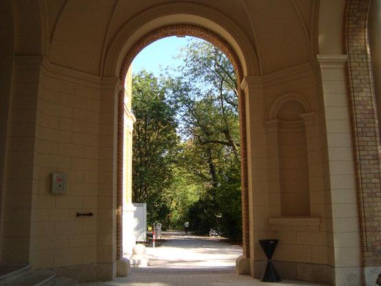 Blick vom Haupteingang der Universitätssternwarte Wien in den Sternwartepark. 'Neben der Schutzfunktion für den Betrieb der Sternwarte ist vor allem die Funktion dieses Gehölzbestandes als außerordentlich wertvoller innerstädtischer Biotop hervorzuheben.'