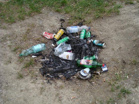 Der Müll sieht noch recht frisch aus
