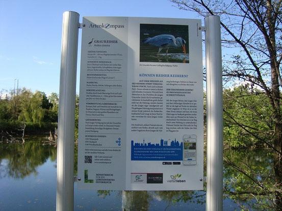 Tafel mit Information über die Graureiher