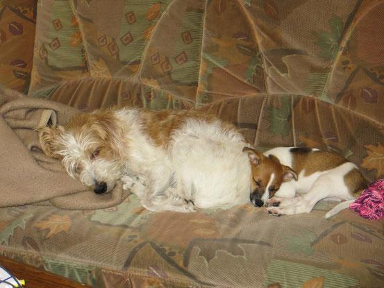Arella und Baneely