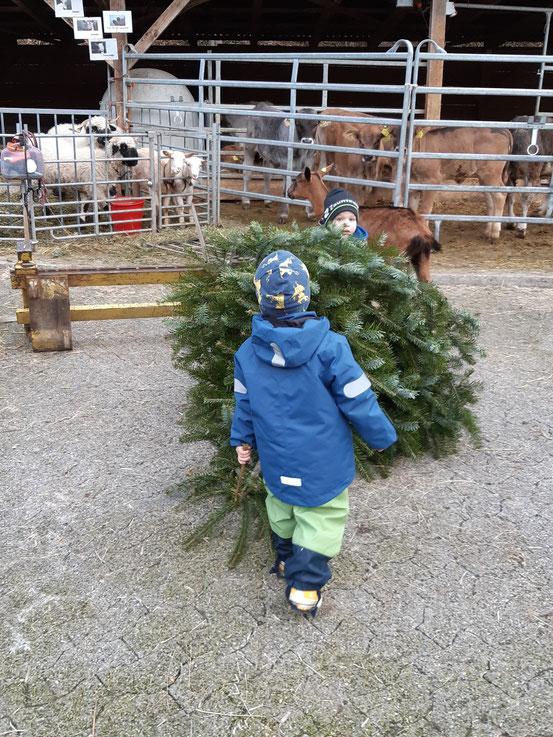 Christbaum für die Schafe und Ziegen
