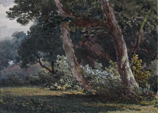 Thomas Burton Watkin Forster Aquarell watercolor Karl Lang Archiv Büsingen