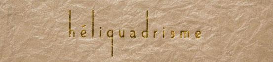 """Cliquez pour découvrir le site de la Collection """"héliquadrisme"""" de Virginie Zurfluh !"""