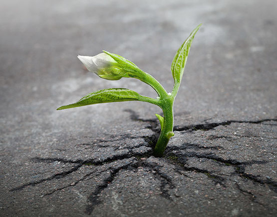Сила преодоления