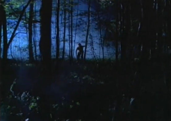 In The Woods (1999)